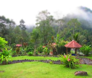 jungle lodge 2