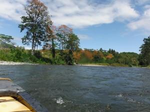 Pejibaye River