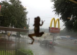 McDonalds tree frog